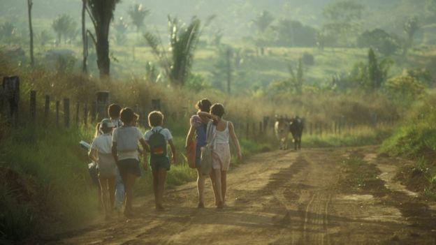 Crianças caminham em estrada de terra em meio a plantações