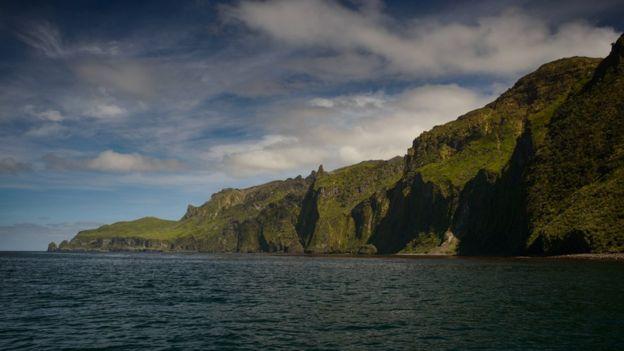 Gough Island coast