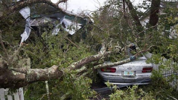 إعصار مايكل: عاصفة من