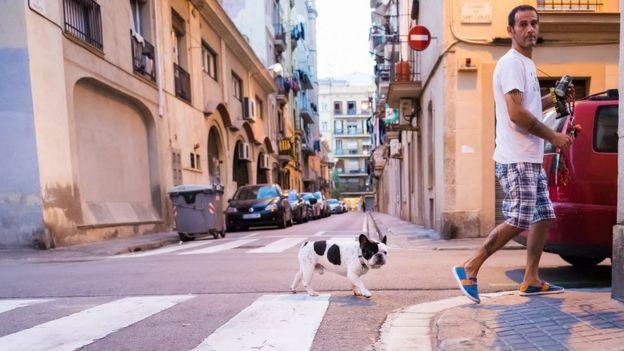Hombre cruzando la calle con un perro