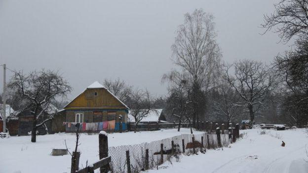 Будинки в селі