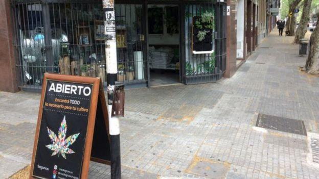 Loja que vende produtos como terra e vasos especiais para plantar cannabis
