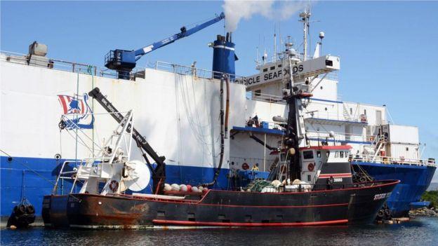 每年有來自14個國家的400艘船隻在這裏入港,捕魚量達數億磅。