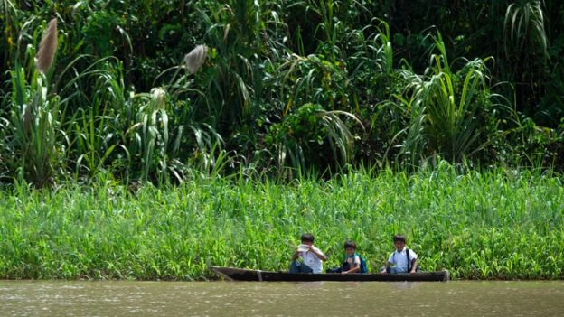 Amazonía