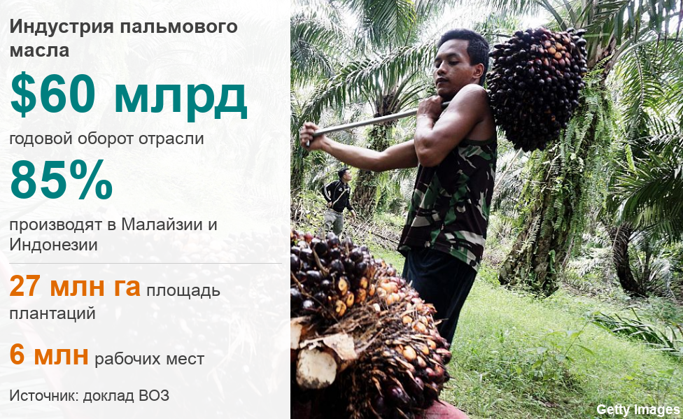 https://ichef.bbci.co.uk/news/624/cpsprodpb/EA35/production/_105375995_datapic-palm_oil_industry-jqaou-nc.png