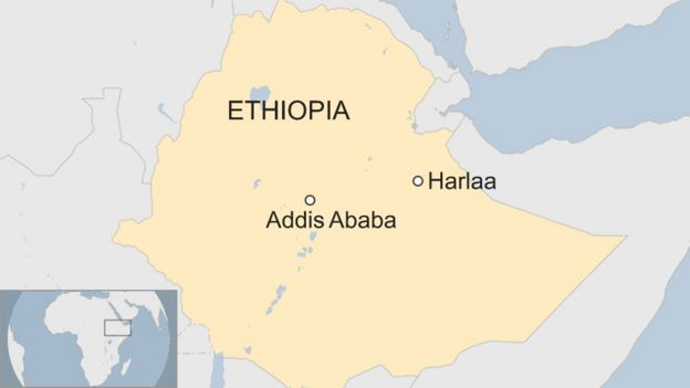 Archaeologists in Ethiopia uncover ancient city in Harlaa BBC News