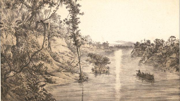 Rio Japurá, Província do Rio Negro