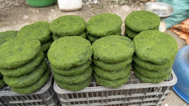 Empadas de spirulina vendidas num mercado local