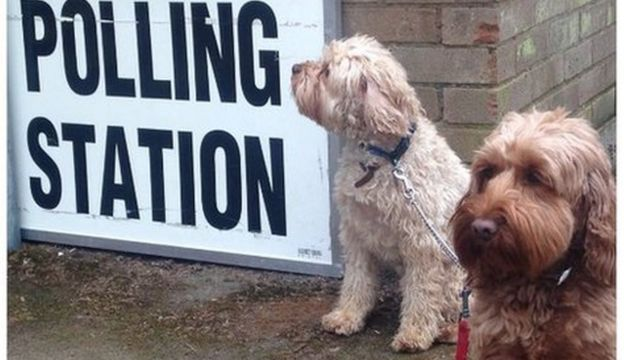 Finney and Molly outside the polling station