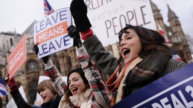 Brext yanlısı protestocular