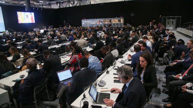 Delegados durante reunião na COP 25
