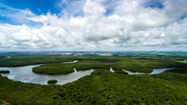 Vista aérea da Amazônia