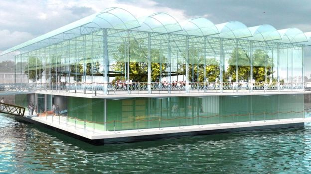 the world s first floating farm making waves in rotterdam bbc news