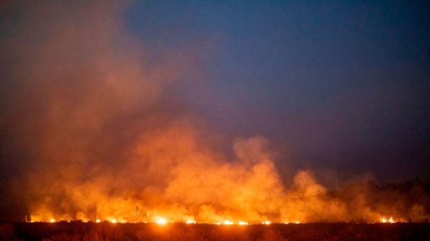 incendios en Amazonía