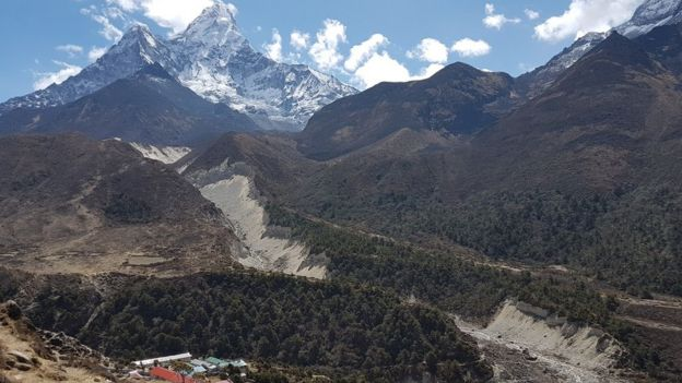Forests in the Khumbu valley of the Everest region