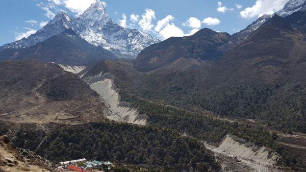 Bosques en el valle del Khumbu.