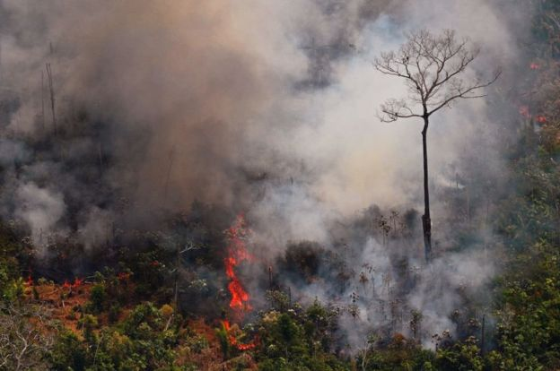 Incendios en la región amazónica