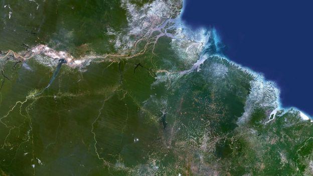 Floresta Amazônica vista do alto