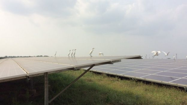 The Kamuthi solar farm