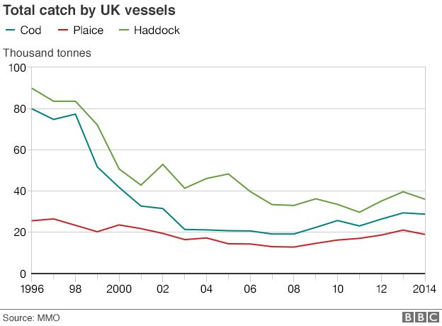 Graph showing total cod catches by UK boats