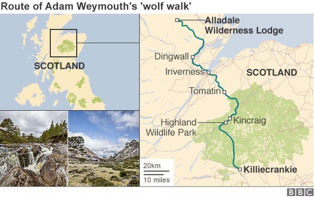 Wolf walk map