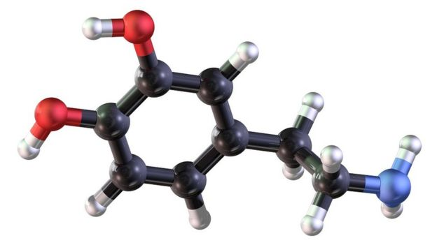 Una representación del neurotransmisor dopamina.