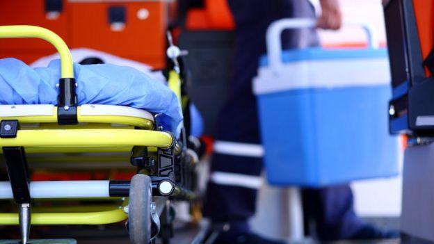 Órgão para transplante