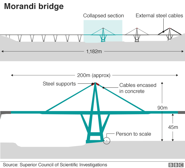 Italy bridge collapse what might have caused it bbc news illustration of the bridge showing key dimensions ccuart