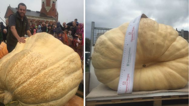 Admirable Record Breaking Pumpkin To Be Turned Into A Boat Bbc News Caraccident5 Cool Chair Designs And Ideas Caraccident5Info