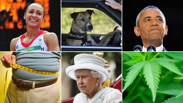 Clockwise from top left: Jessica Ennis, driving dog, Barack Obama, marijuana plant, Queen Elizabeth II, tape meausre around waistline