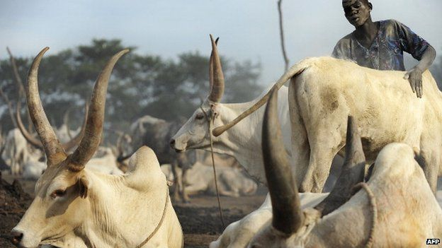 A herdsman from the Dinka group at a cattle-camp near South Sudan's central town of Rumbek