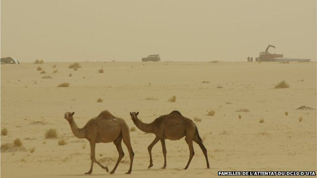 two camels walk past the site