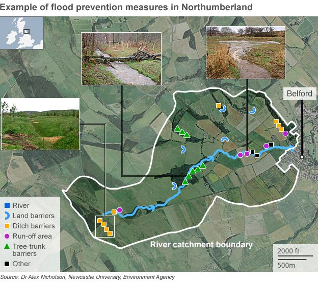 Map showing natural flood prevention measures around Belford in Northumberland