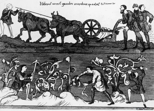 Circa 1250, Peasant farmers ploughing, sowing and pruning