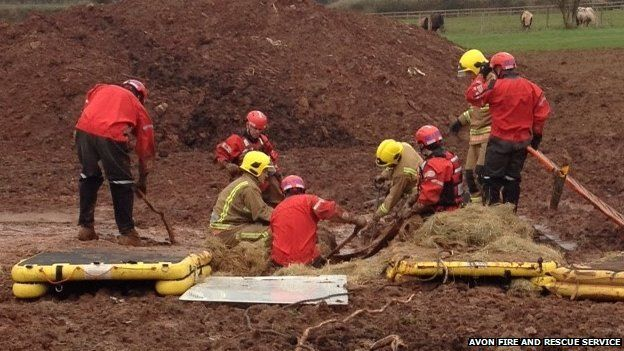 Donkey being rescued by firefighters