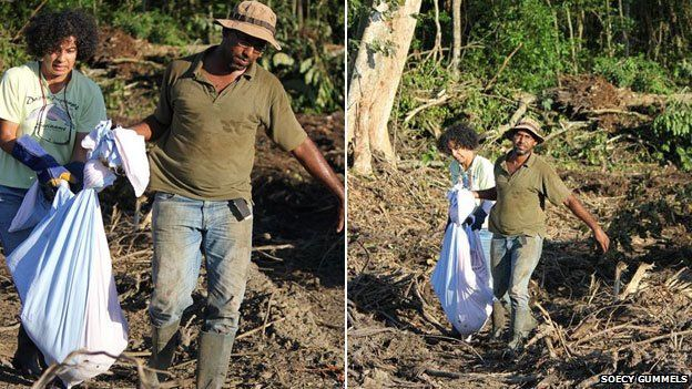 rescuers carry a sack of sloths