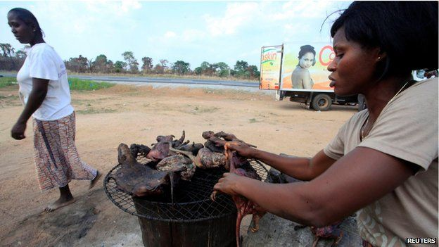 Woman dries bushmeat by the side of the road, Ivory Coast (29 March)