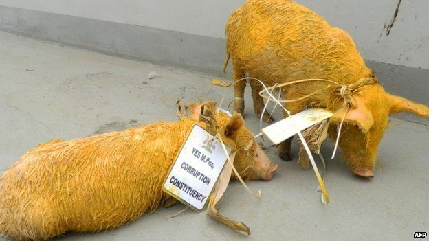 Two painted piglets are outside the parliament building in Kampala