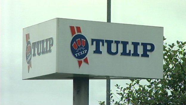 Tulip Ltd sign