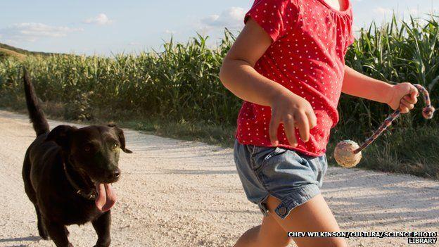 girl walking the dog