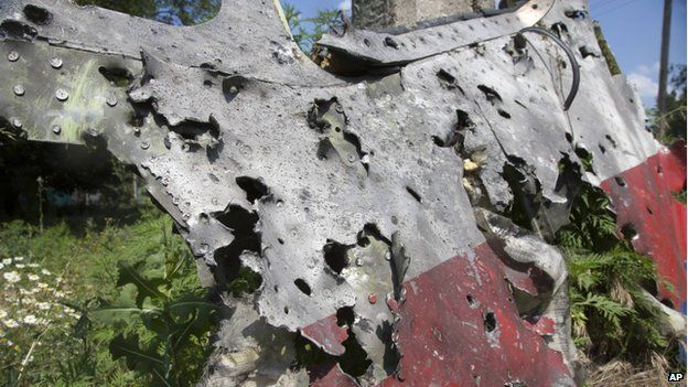 A piece of the crashed Malaysia Airlines Flight 17 lies in the village of Petropavlivka, Donetsk region, eastern Ukraine, on 23 July 2014