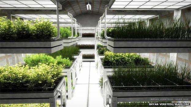 artist's impression of hydroponic greenhouse