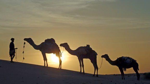 Caravan departs Timbuktu, Mali, at dusk - 2006