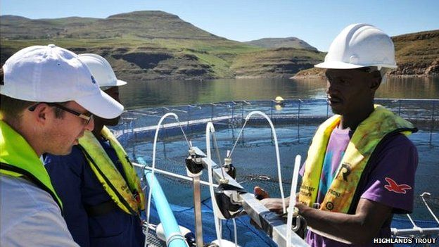 Training on vaccination and fish handling
