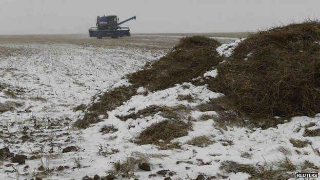 A combine harvester is seen on a wheat field in north Kazakhstan