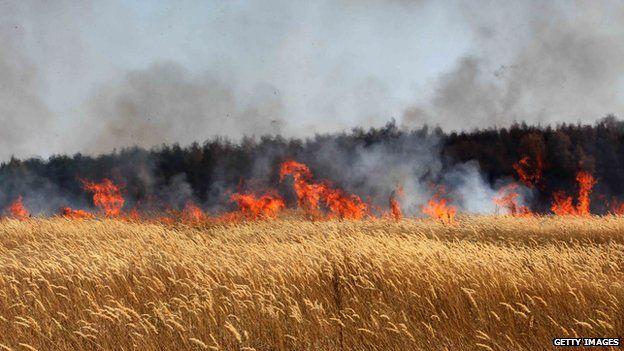 Fires in a Russian wheat field