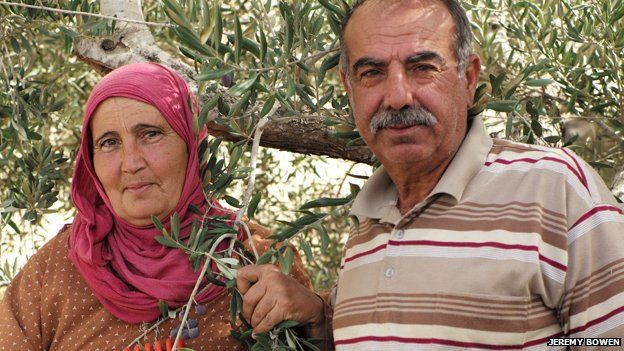 Palestinian olive farmers