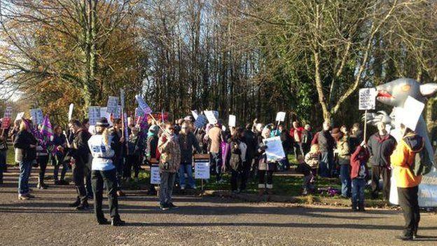 Protestwyr