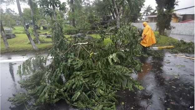 Policeman moves a fallen tree in Legazi (7 Dec 2014)