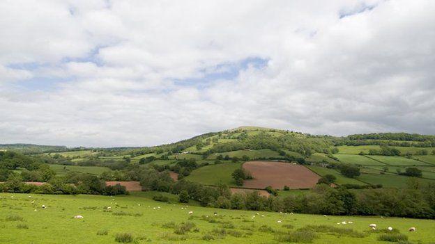 Swydd Henffordd